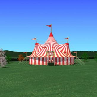N-am exportat circul, am facut circ (Opinii)
