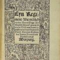 Naprasnica boala care a ucis o jumatate din populatia Europei, in secolul XVI