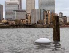 Natura vs. tehnologie: Aplicatia inovatoare care te ajuta in caz de inundatii