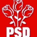 Nedeclararea CNP la recensamant, asumata de PSD ca victorie