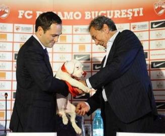 Negoita si Badea isi impart Dinamo