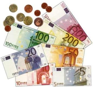 Negritoiu: Adoptarea euro in 2015 nu mai are sens