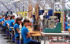 Nemtii care promiteau 1.700 de joburi nu mai vin la Targu Jiu