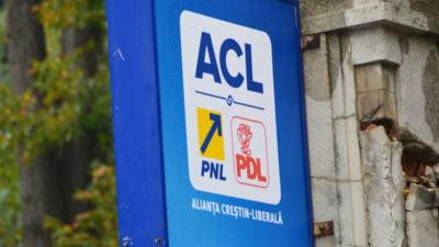Nereguli la vot sesizate de ACL: Pui, fulare si profesori in campanie