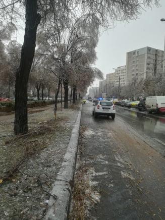 "Niciun troleibuz nu mai circula in Bucuresti, din cauza vremii. STB acuza ""conditiile meteo extreme"""