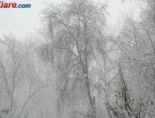 Ninge in mai multe zone din tara: S-a depus zapada, temperaturile au scazut sub 0 grade
