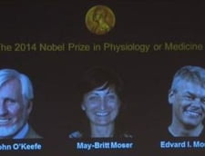 Nobelul pentru Medicina, acordat pentru GPS-ul creierului