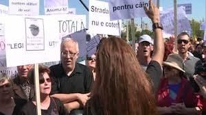 Noi proteste fata de problema cainilor maidanezi, in fata Parlamentului