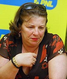 Norica Nicolai: PNL este condamnat sa castige alegerile