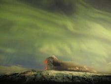 Norul de cenusa vulcanica: inchiderea spatiului aerian, o masura exagerata?