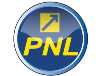 Noua Republica: PNL, probabil cel mai corupt partid din Europa