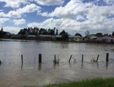 Noua Zeelanda, lovita de inundatii care se produc o data la 500 de ani (Galerie foto & Video)