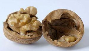Nucile previn cancerul de prostata