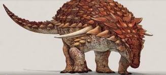 O adevarata mumie! Cel mai bine conservat dinozaur de pe Terra arata ca si cum ar fi trait in urma cu cateva saptamani