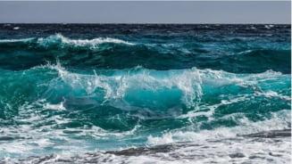 O creatura parca de pe alta lume a fost descoperita in apele Australiei. Are peste 120 de metri! (Video)