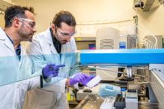 O echipa internationala de cercetatori a descoperit o vulnerabilitate in celulele canceroase. Medicamente personalizate pentru eliminarea cancerului s-ar putea realiza