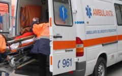 O femeie din Severin, mancata de propriul caine. Sotul i-a gasit dimineata trupul sfasiat: severinencei ii lipseau capul si un picior
