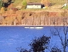 O noua aparitie a monstrului din Loch Ness