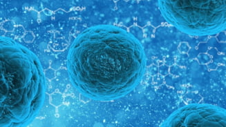 O noua super-bacterie, extrem de rezistenta, se dezvolta, hranita fiind de zahar