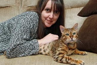 O pisica a furat un pui. Politia a cheltuit 2.000 de lire cu ancheta