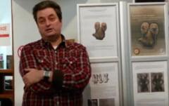 O statueta veche de 8.000 de ani si de valoare exceptionala a fost expusa la Alba Iulia (Video)