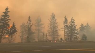 O suta de incendii fac ravagii in vestul Canadei si in California. 500 de oameni au murit din cauza caldurii extreme
