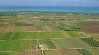 O tara din Orientul Mijlociu vrea sa cumpere 2 milioane de hectare de teren in Romania