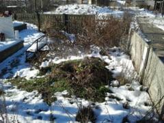 O teava sparta a inundat cu apa fiarta mormintele, intr-un cimitir din Petrosani