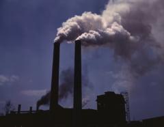OMS: Poluarea duce la cancer!