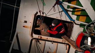 ONG, despre oile de pe nava rasturnata in Portul Midia: Nici criminalii nu merita sa moara asa