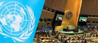 ONU solicită o transformare a sistemelor alimentare. Cum motivează experții această cerință