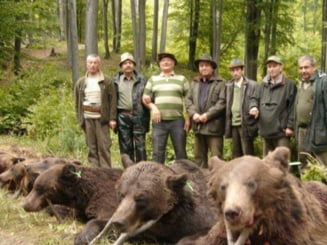 OUG privind interventia imediata asupra ursilor a fost finalizata. Ce contine actul normativ