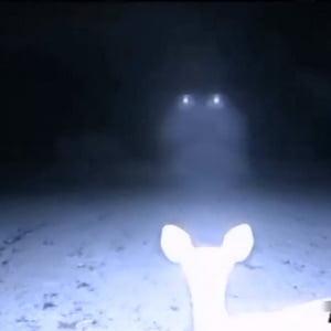 OZN filmat cu o camera video in infrarosu, in Statele Unite? (Video)