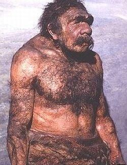 Oamenii de Neanderthal gateau si mancau legume