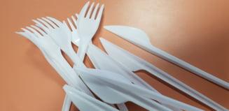 Obiectele din plastic de unica folosinta, interzise in UE din 2021: De la tacamuri si farfurii, la betisoarele pentru urechi