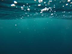 Oceanele ar putea avea remediul contra multor boli. Noua teorie care da sperante pentru pandemiile viitoare, inclusiv Covid-19