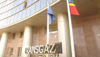 Oferte trucate la licitatiile organizate de Transgaz? Consiliul Concurentei a investigat 13 companii