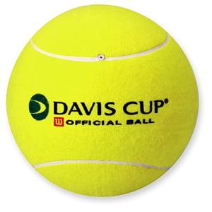 Olanda demoleaza Romania, in Cupa Davis