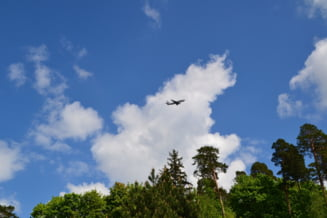 Olanda si Australia acuza oficial Rusia de doborarea avionului MH17 in Ucraina