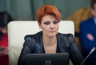 Olguta Vasilescu, despre Legea salarizarii: Pana la 4.000 lei, salariile se dubleaza. Dupa acest prag cresc cu 45%