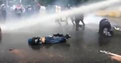 Olguta Vasilescu a postat un filmulet cu protestatari spulberati cu tunuri cu apa (Video)
