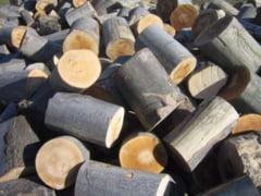 Operatiuni ilegale cu lemn, in judetul Giurgiu! Politistii au aplicat peste 30 de sanctiuni!