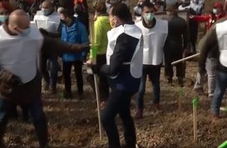 """Orban a vrut sa planteze pomi dar i s-a rupt sapa: """"Am dat de foarte multe radacini si este mai greu de scos pamantul"""" VIDEO"""