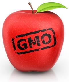 Organismele modificate genetic: Decizie istorica ce poate duce la raspandirea lor in UE