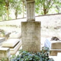 Osemintele lui Constantin Brancusi, repatriate, dupa cum si-a dorit sculptorul