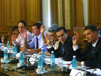 PD-L: PSD si PNL folosesc mijloace ilegale pentru a motiva existenta Comisiei Udrea