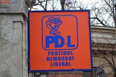 PDL - ziua Z (Opinii)