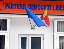 PDL: Prin sesizarea la CCR, am obligat din nou PSD la respectarea legii