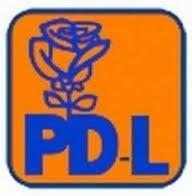 PDL Bucuresti va incepe in toamna dezbaterea pe candidaturile la locale