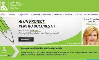 PDL a ales verdele pentru campania din Bucuresti - semnifica tinerete, forta